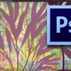 Photoshop Texture: Create 4 Photoshop Textures from 2